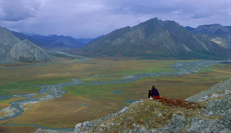 Arctic National Wildlife Refuge. Foto: Steven Chase, U.S. Fish and Wildlife Service via Wikimedia