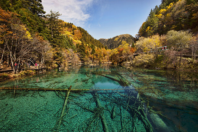 Jiuzhaigou valley i Sichuan i Kina. Foto:  chensiyuan Licensierad under GFDL via Commons https://commons.wikimedia.org/wiki/File:1_jiuzhaigou_valley_wu_hua_hai_2011b.jpg#/media/File:1_jiuzhaigou_valley_wu_hua_hai_2011b.jpg