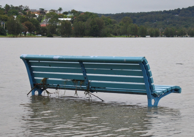 """The best seat"". I Warners Bay, Lake Macquire har vattnet sigit en meter efter ihållande regn. Foto: Tim J Keegan via Flickr"