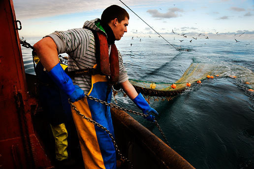 Storskaligt fiske. Foto: Indonesia Fishing Crew Agency via Flickr https://www.flickr.com/photos/fishingcrewagency/