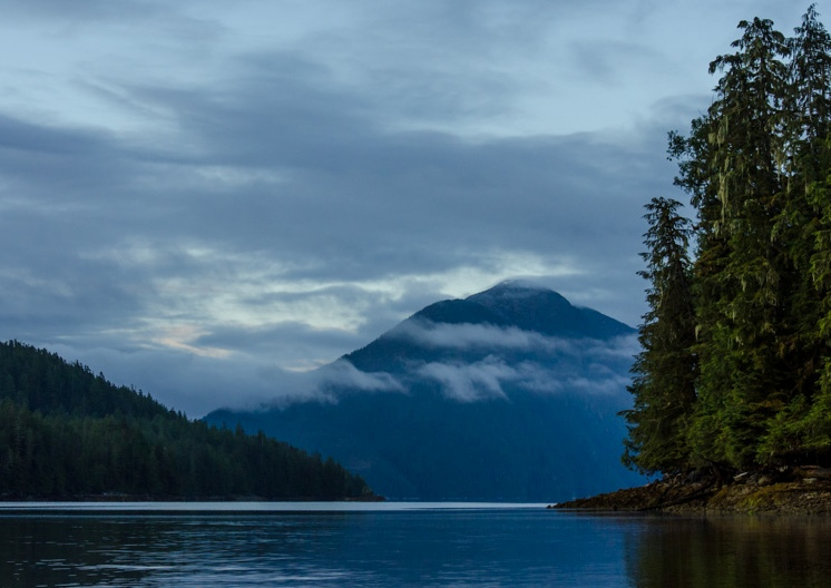Great Bear Rainforest, Kanada. Foto: Jim Maloney via Flickr