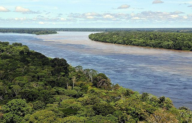 Amazonas. Foto: Neil Palmer/CIAT - Flickr, CC BY-SA 2.0, https://commons.wikimedia.org/w/index.php?curid=28390327