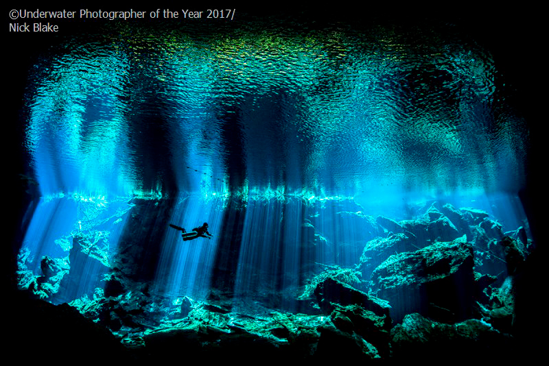 Årets brittiska undervattensfotograf 2017 'Out of the Blue' av Nick Blake (UK)